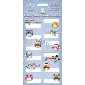 Arch Vánoční etikety samolepky Sovičky modrý arch 705 12 etiket