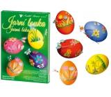 Sada k dekorovanie vajíčok - Jarná lúka 7715 0795