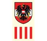 Arch Tetovací obtisky na obličej i tělo Rakouská vlajka 2 motiv