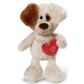 Nici Love You Pes Plyšová hračka najjemnejšie plyš 25 cm