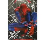 Ditipo Dárková papírová taška pro děti L Spiderman s pavučinou 32 x 12 x 26 cm 2928 003