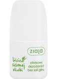 Ziaja Olivové listy guličkový antiperspirant dezodorant roll-on pre ženy 60 ml