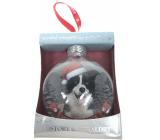 Albi Sklenená vianočné ozdôbky so zvieratkami - Border kólia 7,5 cm x 8 cm x 3,6 cm