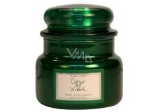 Village Candle Citrusový věnec - Citrus Wreath vonná svíčka ve skle 2 knoty 262 g