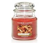 Yankee Candle Cinnamon Stick - Skořicová tyčinka vonná svíčka Classic střední sklo 411 g