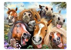 3D pohlednice- Kone Selfie 16 x 12 cm