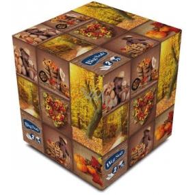 Big Soft Jeseň papierové vreckovky biele 2 vrstvové v škatuľke 75 kusov