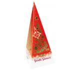 Vánoční balení zeleného čaje, pomeranč a skořice odvodňuje, proti nadváze cholesterolu, posiluje kosti 20 x 2 g
