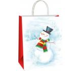 Ditipo Darčeková papierová taška 18 x 8 x 24 cm EKO Vianočná biela - snehuliak