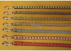 B & F Súprava Nylon.obojek + vodítko 1,5 x 26-38 / 125 cm 1 kus