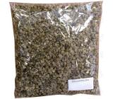 Seva - Seed krmná řepa žlutá Urus Poly 200 g