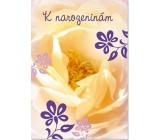 Ditipo Hracie prianie k narodeninám Žltý kvet No Name zľakne 224 x 157 mm