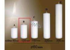 Lima Gastro hladká sviečka biela valec 60 x 120 mm 1 kus