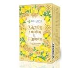 Megafyt Bylinková lekáreň Ovocný Zázvor s medom & citrónom 20 x 2 g