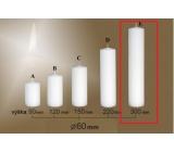 Lima Gastro hladká svíčka bílá válec 60 x 300 mm 1 kus