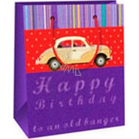 Ditipo Darčeková papierová taška 11,4 x 6,4 x 14,6 cm fialová auto