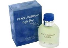 Dolce & Gabbana Light Blue toaletná voda 125 ml