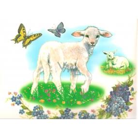 Okenné fólie bez lepidla ovečka
