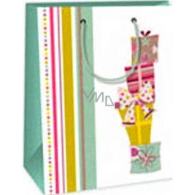 Ditipo Darčeková papierová taška 18 x 10 x 22,7 cm biela darčeky mašle