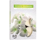 BISPOL Aura White Flowers - Biele kvety vonné čajové sviečky 6 kusov