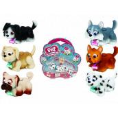 Pet Parade Psík + vodítko + Kostečka + samolepka, dvíha hračku, ide na vodítku, hýbe hlavou a nohami, psíci rôzne druhy