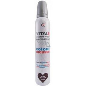 Vitale Exclusively Professional farbiace penové tužidlo s vitamínom E Plum - Švestka 200 ml