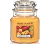 Yankee Candle Mango Peach Salsa - Salsa z manga a broskví vonná svíčka Classic střední sklo 411 g