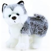 Rappa Plyšový pes Husky 20 x 10 x 20 cm