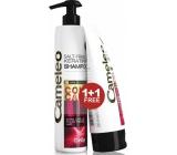 Delia Cameley BB Keratínový šampón pre farbené a melírované vlasy 250 ml + kondicionér 200 ml, duopack