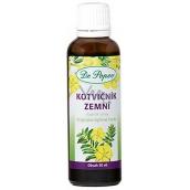 Dr. Popov Kotvičník zemní originální bylinné kapky k normální činnosti pohlavních orgánů, podporuje hormonální aktivitu, udržuje celkovou vitalitu 50 ml