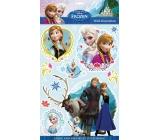 Room Decor Samolepky na zeď Disney Ledové království 3D 40 x 29 cm
