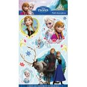 Room Decor Samolepky na stenu Disney Ľadové kráľovstvo 3D 40 x 29 cm
