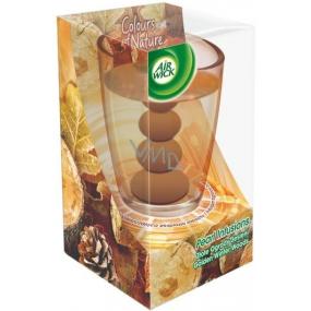 Air Wick Pearl Infusions Zlatavý podzim vonná gelová svíčka ve skle 120 g