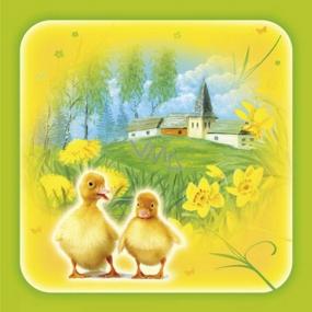 Ditipo Papierové obrúsky 3 vrstvové 33 x 33 cm 20 kusov Veľkonočné Kačiatka
