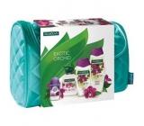 Palmolive Orchid sprchový gel 250 ml + koupelová pěna 500 ml + tekuté mýdlo 300 ml + Speed.st. + etue, dárková sada
