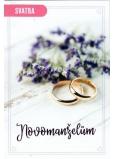 Nekupto Prianie k svadbe Novomanželom 115 x 170 mm 3464 F
