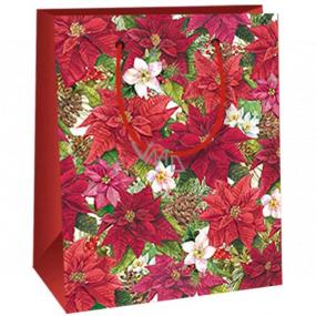 Ditipo Darčeková papierová taška 11,5 x 6,5 x 14,5 cm Vianočná hviezda E