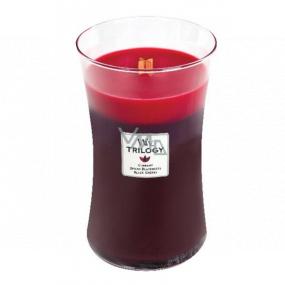 Woodwick Trilogy Sun Ripened Berries - Letné bobule vonná sviečka s dreveným knôtom a viečkom sklo veľká 609 g