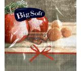 Big Soft Papierové obrúsky 2 vrstvové 33 x 33 cm 20 kusov Vianočné Jablká, škorica, orechy