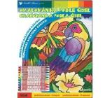 Omaľovánka podľa čísel s 10 krajony papagáj 29 x 24 cm