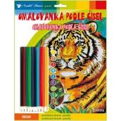 Omalovánky podle čísel s pastelkami Tygr 24 x 29 cm